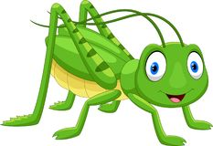逗人喜爱的蚂蚱动画片 皇族释放例证