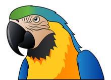 逗人喜爱的被隔绝的鹦鹉蓝色金刚鹦鹉动画片 库存图片