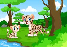 逗人喜爱的豹子动画片在森林里 免版税库存照片