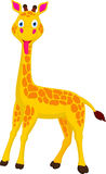 逗人喜爱的长颈鹿动画片 免版税库存图片