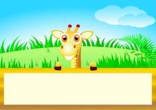 逗人喜爱的长颈鹿 库存照片