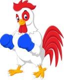 逗人喜爱的雄鸡动画片拳击 库存图片