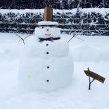 逗人喜爱的雪人 免版税库存照片