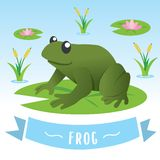 逗人喜爱的青蛙动画片 皇族释放例证