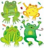 逗人喜爱的青蛙滑稽的集 库存图片