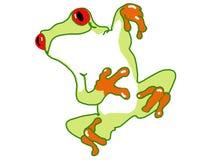 逗人喜爱的青蛙绿色结构树 免版税图库摄影