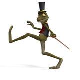 逗人喜爱的青蛙绿色蟾蜍印度桃花心木 库存照片
