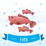 逗人喜爱的鱼传染媒介 皇族释放例证