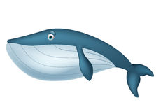 逗人喜爱的鲸鱼动画片 库存照片