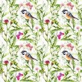 逗人喜爱的鸟,草甸-蝴蝶,草,花 重复性的模式 水彩 免版税库存图片