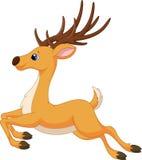逗人喜爱的鹿动画片赛跑 库存照片