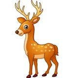 逗人喜爱的鹿动画片 库存图片