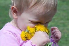逗人喜爱的婴孩用蒲公英 免版税图库摄影
