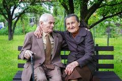 逗人喜爱的80正岁在他们的庭院里与摆在为一张画象的夫妇结婚 永远爱概念 库存图片