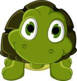 逗人喜爱的绿海龟动画片 库存图片