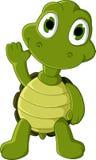 逗人喜爱的绿海龟动画片 图库摄影