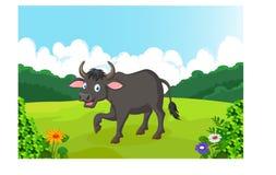 逗人喜爱的水牛动画片 免版税图库摄影