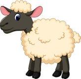 逗人喜爱的绵羊动画片 免版税库存照片