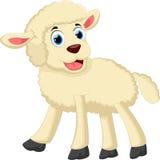 逗人喜爱的绵羊动画片 免版税库存图片