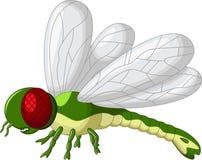 逗人喜爱的绿色蜻蜓动画片 免版税库存图片