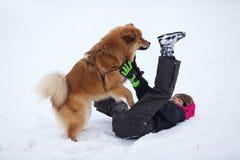 逗人喜爱的Elo狗在雪的一个女孩跳 免版税库存照片