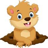 逗人喜爱的groundhog动画片 免版税库存照片