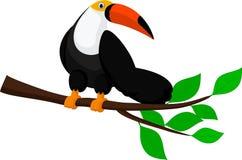逗人喜爱的toucan动画片 库存例证