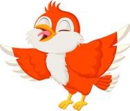 逗人喜爱红色鸟唱歌 免版税库存照片