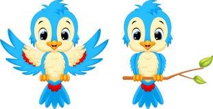 逗人喜爱鸟的动画片 免版税图库摄影