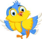 逗人喜爱鸟的动画片 库存图片