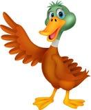 逗人喜爱鸭子动画片挥动 库存照片