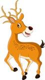 逗人喜爱鹿动画片摆在 免版税库存图片