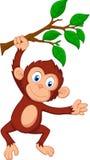 逗人喜爱猴子动画片垂悬 向量例证