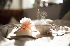 通入蒸汽的茶杯 免版税库存照片