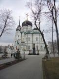 通告大教堂沃罗涅日 早期的春天 库存照片