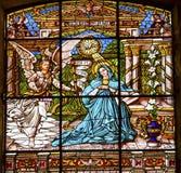 通告彩色玻璃老大教堂Guadalupw墨西哥城墨西哥 库存照片