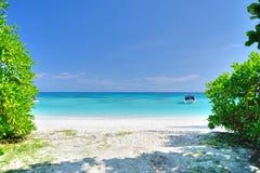 通往海滩和海的道路在Ko Ta柴海岛的树之间在泰国 库存图片