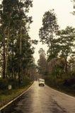 通往米里克的道路在一个雨天 免版税库存图片