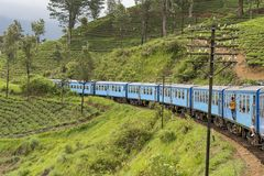 通过从康提的小山国家训练乘驾给埃拉在斯里兰卡 库存照片