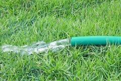 通过使用橡皮泳圈的浇灌的绿草 免版税库存图片