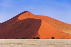 通过在一个红色沙丘前面的跳羚牧群在Sossusvlei,纳米比亚 免版税库存照片