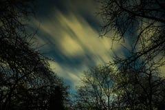 通过在月光的云彩充分在森林和在夜空星 库存照片