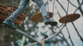 通过在树中的年轻男孩电缆路径上流,极端体育在冒险公园 股票视频