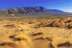 通过对干草原和石头山的沙丘 免版税库存图片