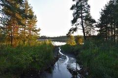 通过对湖的溪 库存照片