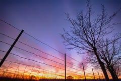 通过有刺的篱芭被观看的火热的日落 库存图片