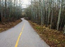 通过树涂柏油骑自行车的道路在卡尔加里, AB 免版税库存照片