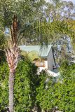 通过树被观看的澳大利亚房子用在前景和产树胶之树的后边棕榈树 JPG 免版税库存图片