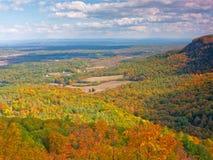 通过桔子和黄色显露的秋天辉煌 免版税库存图片