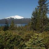 通过森林被看见的Diamond湖 库存照片